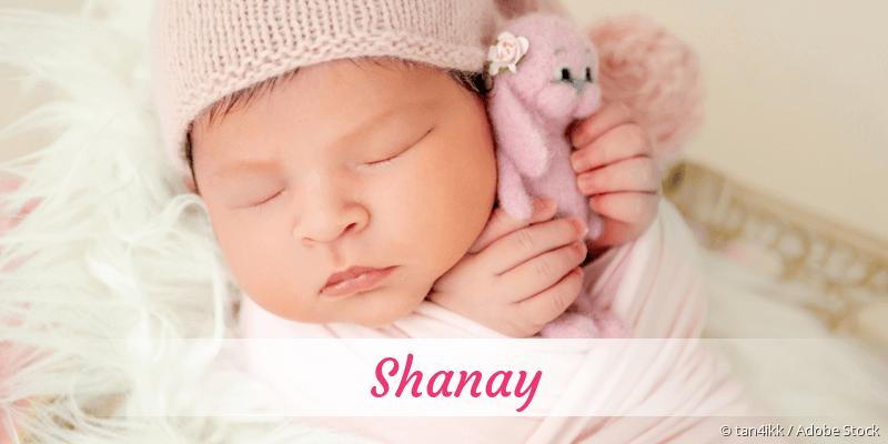 Name Shanay als Bild