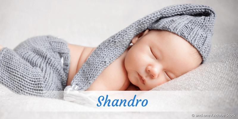 Name Shandro als Bild