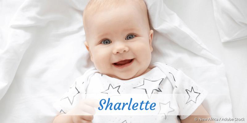 Name Sharlette als Bild