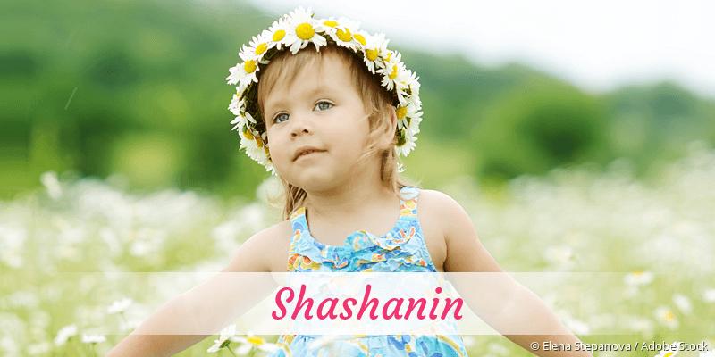 Name Shashanin als Bild
