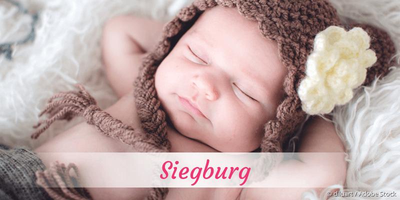 Name Siegburg als Bild