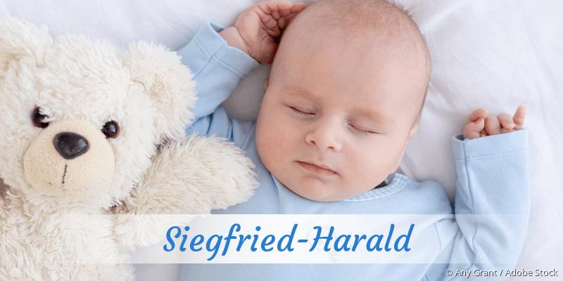 Name Siegfried-Harald als Bild