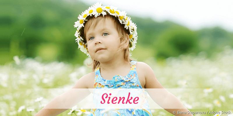 Name Sienke als Bild