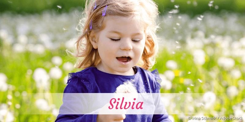 Name Silvia als Bild