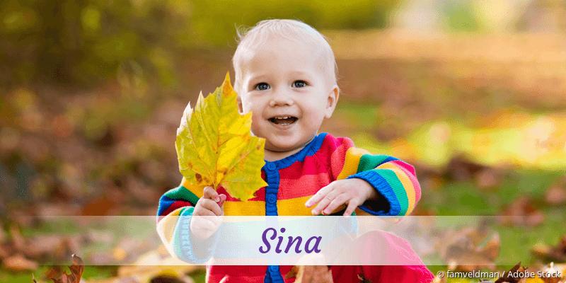 Name Sina als Bild