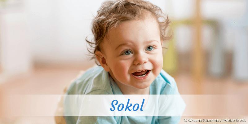Name Sokol als Bild