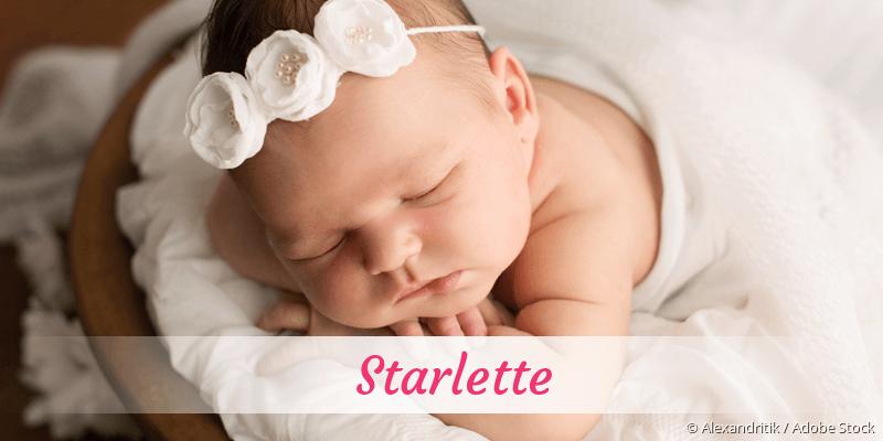 Name Starlette als Bild
