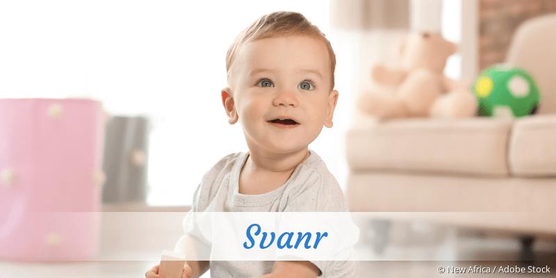Name Svanr als Bild