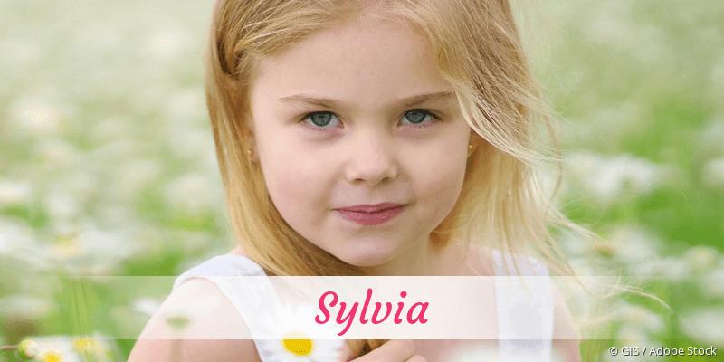 Name Sylvia als Bild