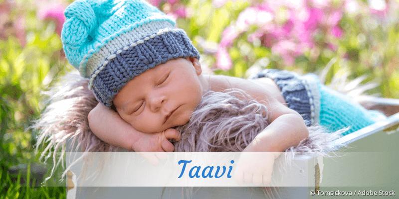 Name Taavi als Bild