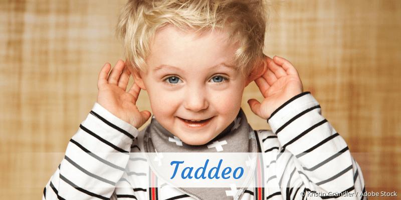Name Taddeo als Bild