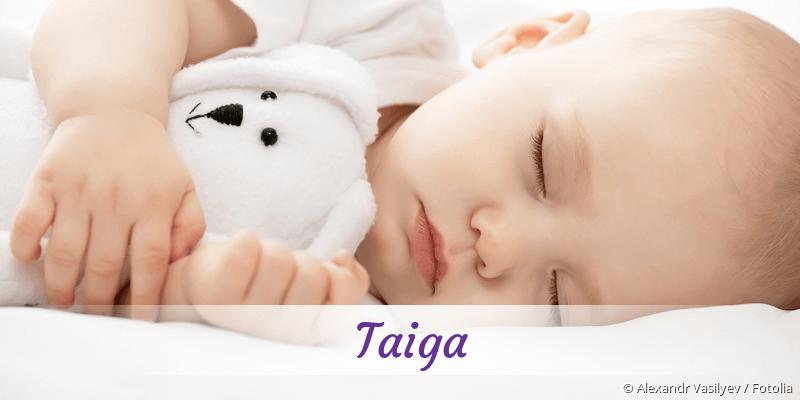 Name Taiga als Bild