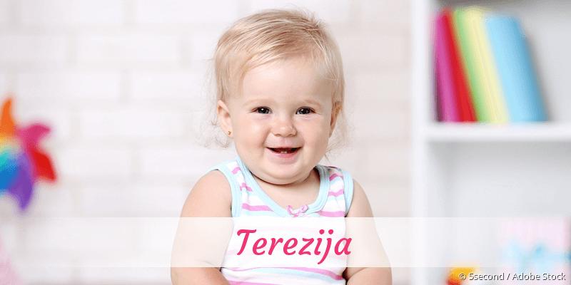 Name Terezija als Bild
