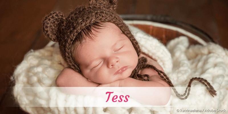 Name Tess als Bild