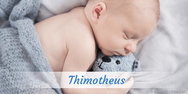 Name Thimotheus als Bild