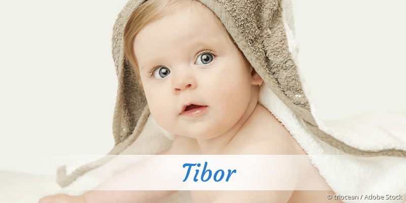 Name Tibor als Bild