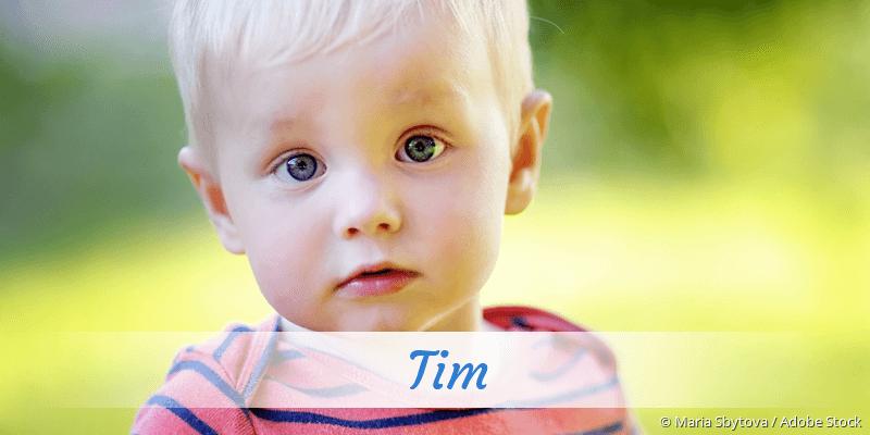 Name Tim als Bild