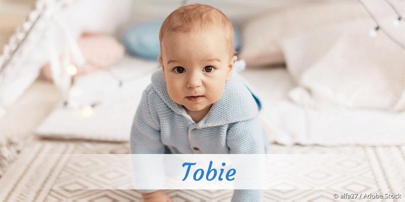 Name Tobie als Bild