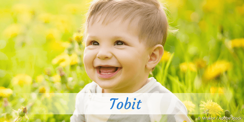 Name Tobit als Bild