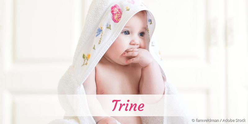 Name Trine als Bild