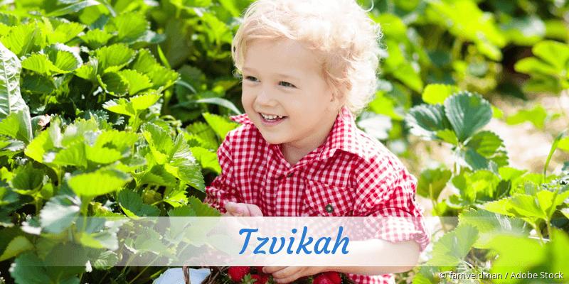 Name Tzvikah als Bild