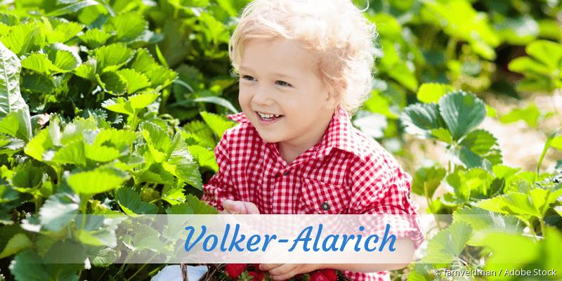 Name Volker-Alarich als Bild