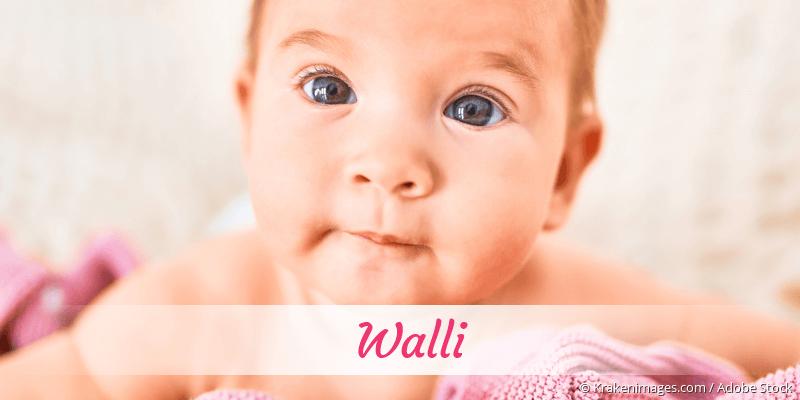 Name Walli als Bild