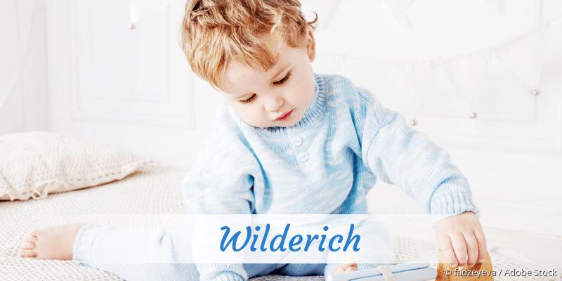 Name Wilderich als Bild