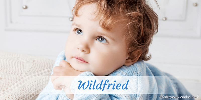 Name Wildfried als Bild