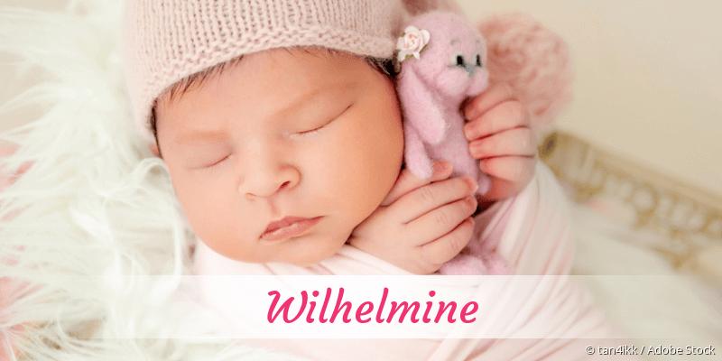 Name Wilhelmine als Bild