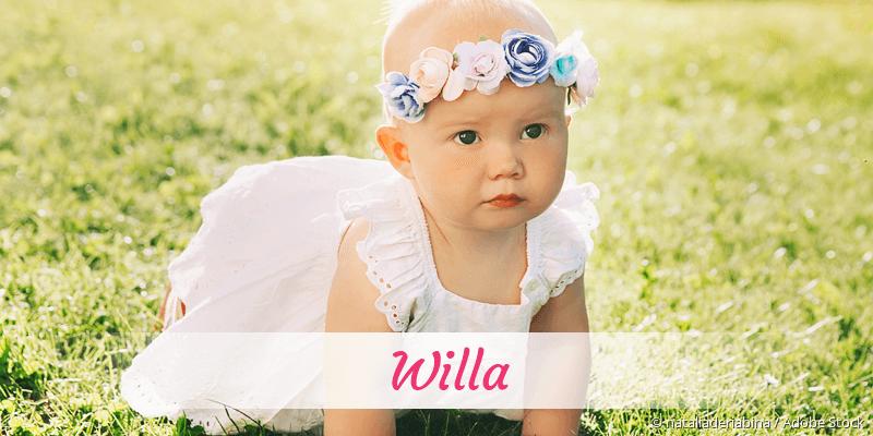Name Willa als Bild