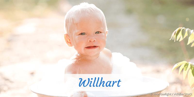 Name Willhart als Bild