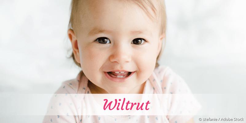 Name Wiltrut als Bild