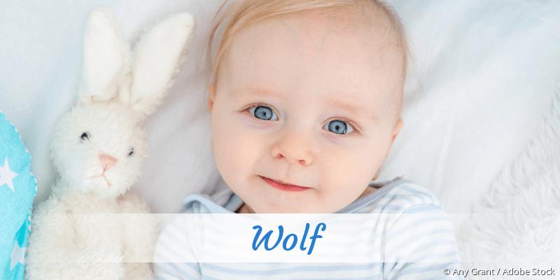 Name Wolf als Bild