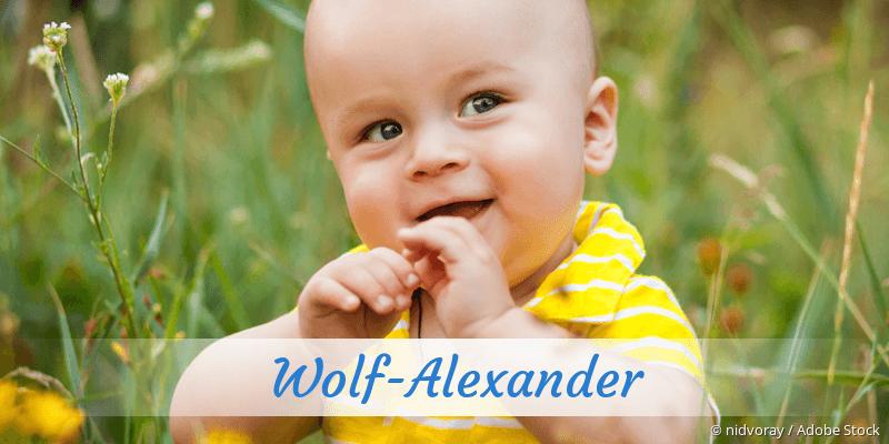 Name Wolf-Alexander als Bild