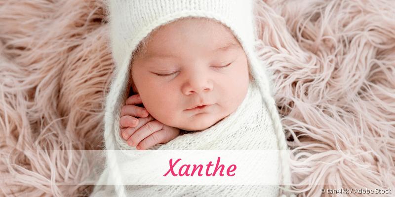 Name Xanthe als Bild