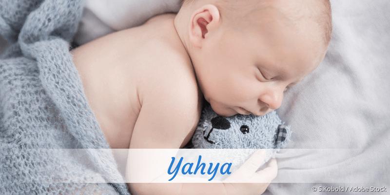 Name Yahya als Bild