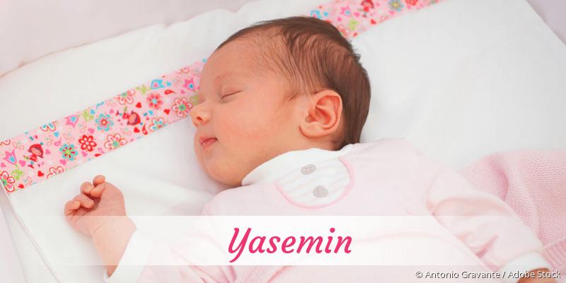 Name Yasemin als Bild