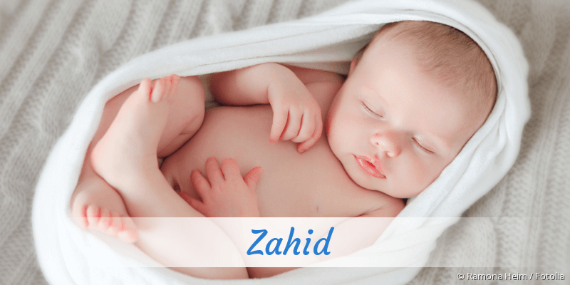 Name Zahid als Bild