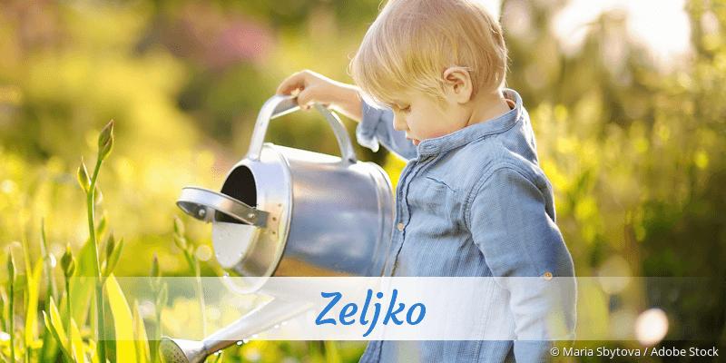 Name Zeljko als Bild
