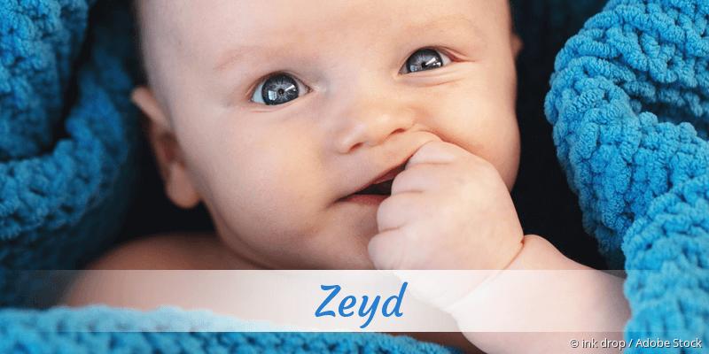 Name Zeyd als Bild